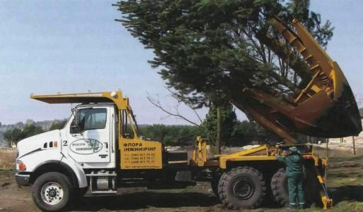 Спецтехника для пересадки деревьев